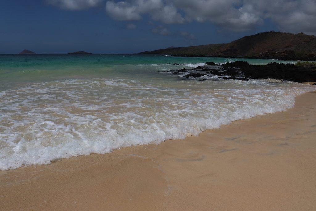 Visit Santa Cruz - Galapagos Islands