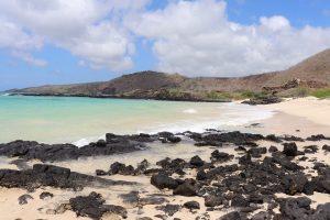 Travel to Isabela Island - Galapagos